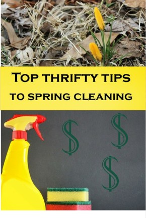 Spring Cleaning the ThriftyWay!